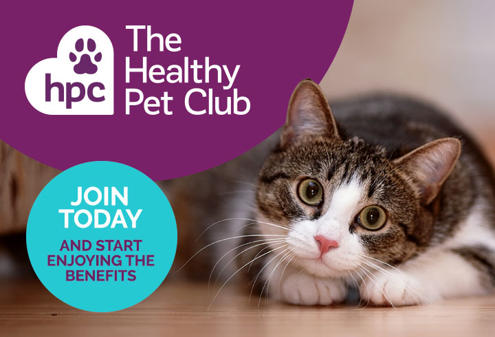 JoinThe Healthy Pet Club today